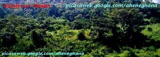 Africasiaeuro Blog - Mount Nimba